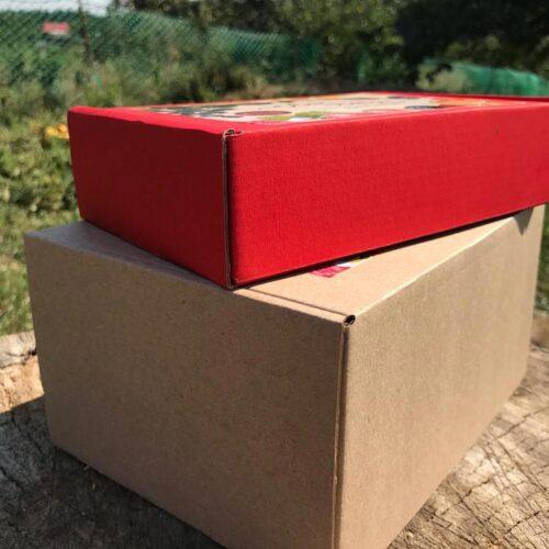 Пастила асорті – коробка 300 г